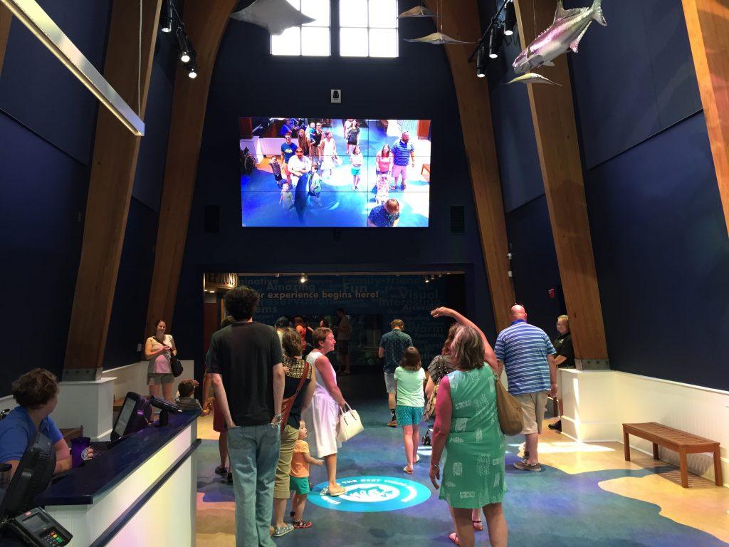 National Aquarium on Roanoke Island, Cortina Productions