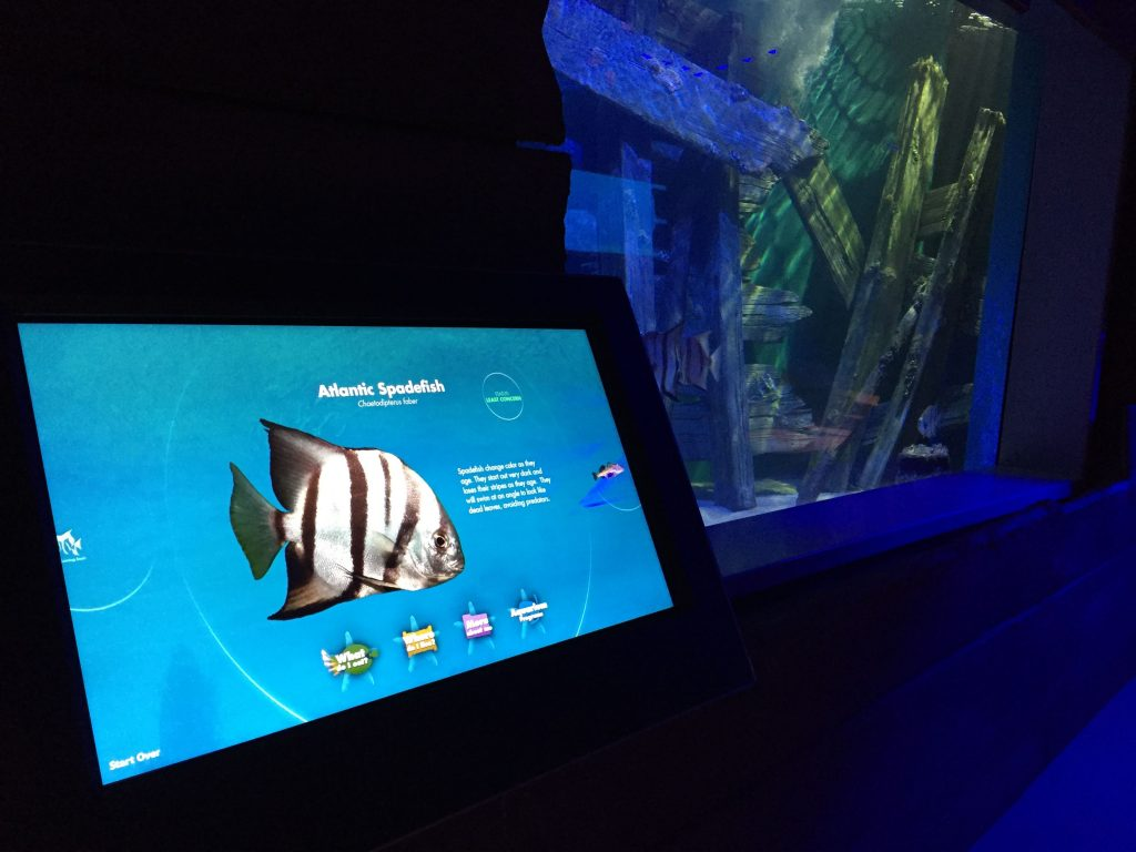 North Carolina Aquarium on Roanoke Island, Cortina Productions